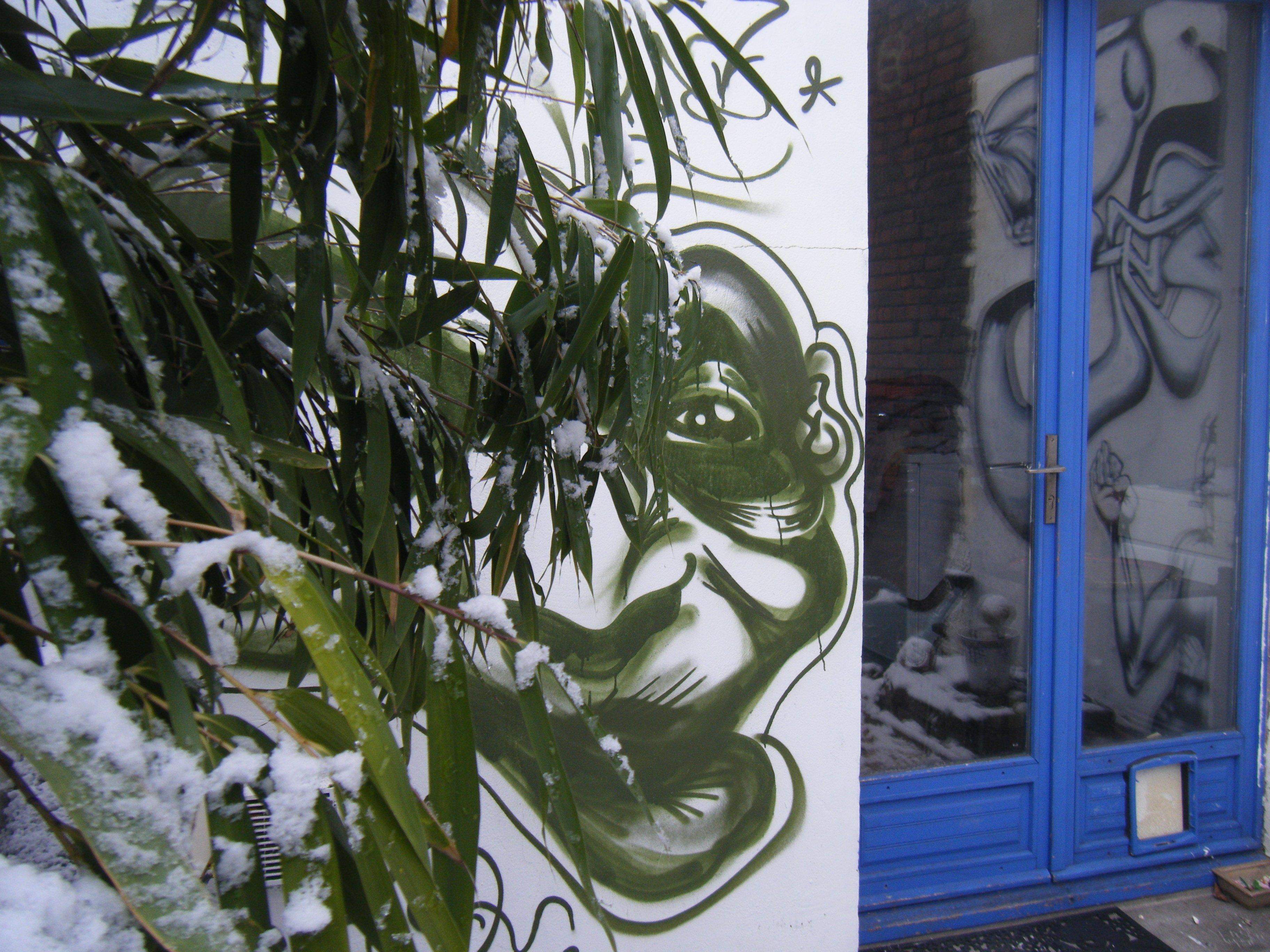neige2010013.jpg