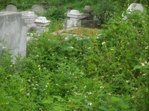 NK-cimetière-2-300x224