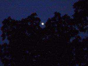 pleine lune dans photos NK-pleine-lune1-300x224