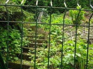 Lettre ouverte à St Pierre dans La mort saumur-jardin-300x224